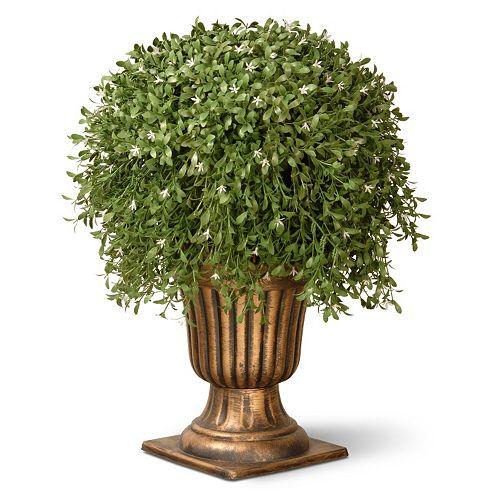 "National Tree Company 26"" Artificial Argentea Plant"