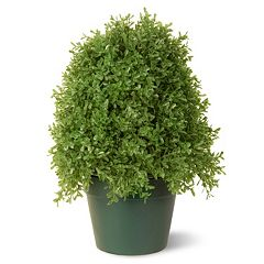 National Tree Company 15' Artificial Boxwood Tree