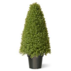 """National Tree Company 36"""" Artificial Boxwood Tree"""