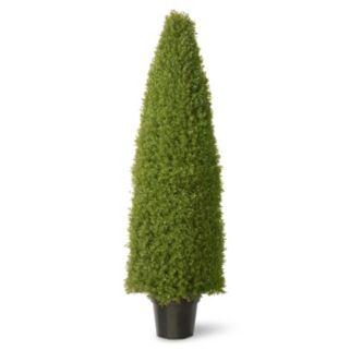 """National Tree Company 60"""" Artificial Boxwood Tree"""