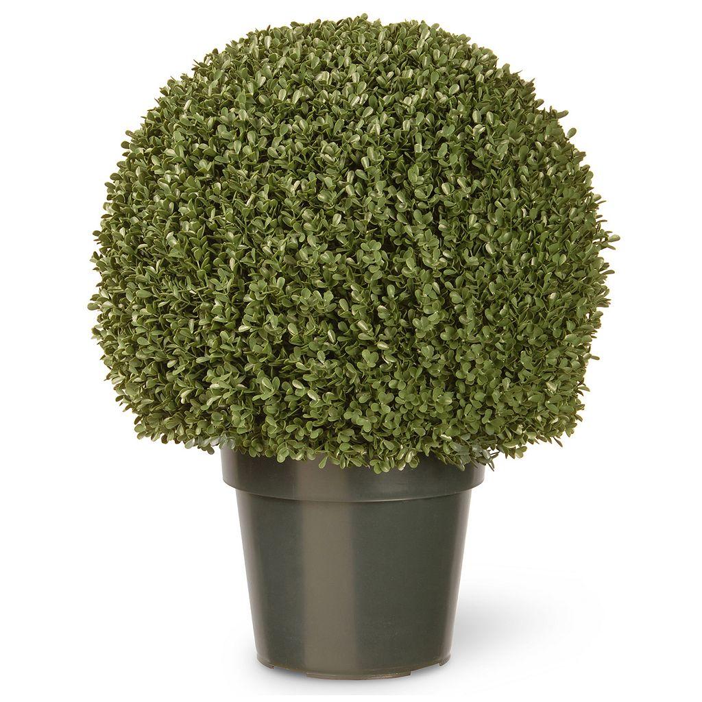 National Tree Company 22