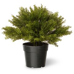 National Tree Company 15' Artificial Globe Juniper Plant
