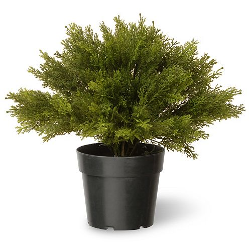 "National Tree Company 15"" Artificial Globe Juniper Plant"