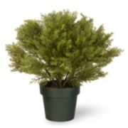 "National Tree Company 20"" Artificial Globe Juniper Plant"