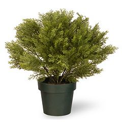 National Tree Company 20' Artificial Globe Juniper Plant