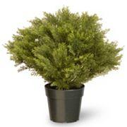 National Tree Company 24' Artificial Globe Juniper Plant