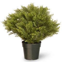 National Tree Company 24' Artificial Globe Juniper Plant