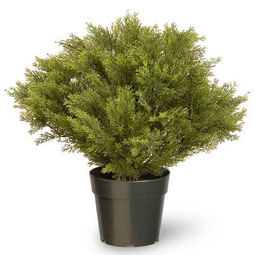 "National Tree Company 24"" Artificial Globe Juniper Plant"