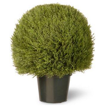 National Tree Company 24