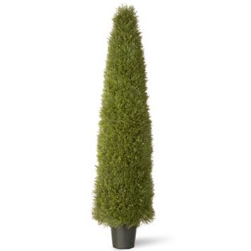 National Tree Company 72