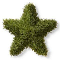 National Tree Company 36' Artificial Juniper Star Decor