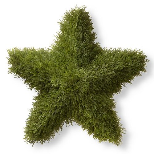 "National Tree Company 36"" Artificial Juniper Star Decor"