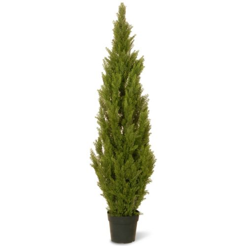 National Tree Company 60 Artificial Arborvitae Tree