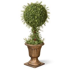 National Tree Company 36' Artificial Mini Tea Leaf One-Ball Topiary