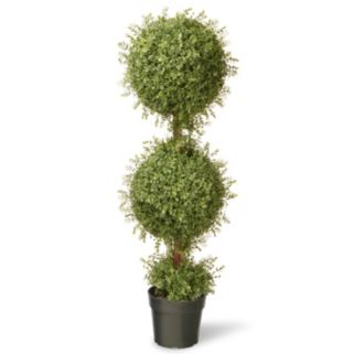 "National Tree Company 48"" Artificial Mini Tea Leaf Two-Ball Topiary"