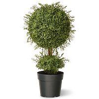 National Tree Company 30