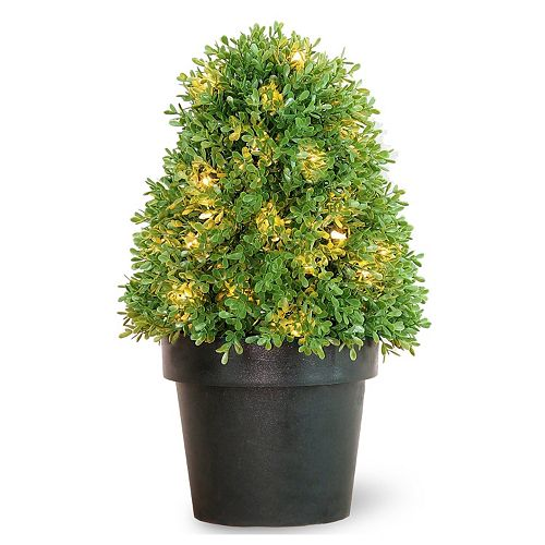 "National Tree Company Pre-Lit 18"" Artificial Boxwood Tree"
