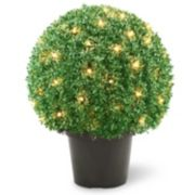 "National Tree Company Pre-Lit 22"" Mini Boxwood Ball Artificial Plant"