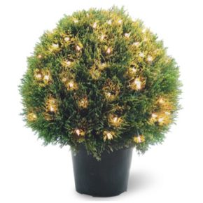 "National Tree Company Pre-Lit 24"" Artificial Cedar Bush Plant"