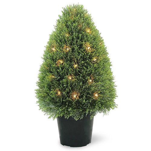 "National Tree Company Pre-Lit 30"" Artificial Upright Juniper Tree"