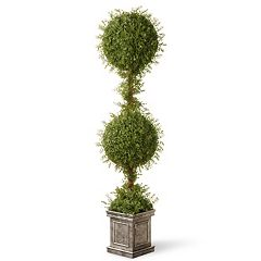 National Tree Company 60' Artificial Mini Tea Leaf Square Base Two-Ball Topiary