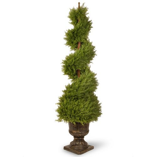 "National Tree Company 60"" Artificial Wide Juniper Spiral Tree"