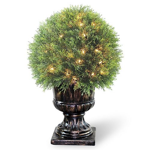 "National Tree Company Pre-Lit 27"" Artificial Upright Juniper Ball Plant"