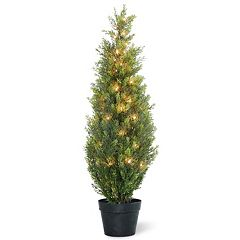 National Tree Company Pre-Lit 36' Artificial Arborvitae Plant