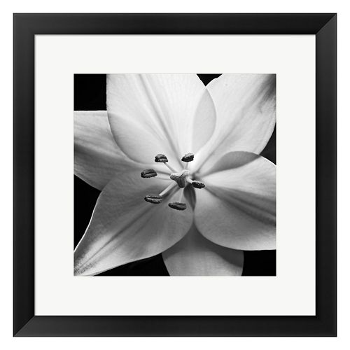 Metaverse Art White Lily Framed Wall Art