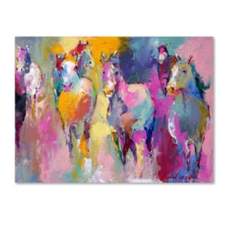 Trademark Fine Art Wild Horse Canvas Wall Art