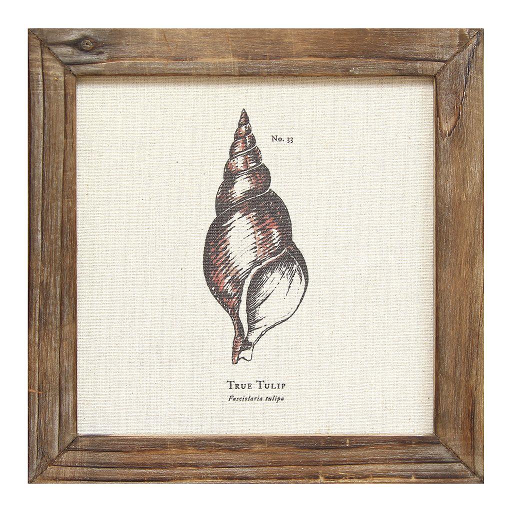 Stratton Home Decor Tulip Seashell Framed Wall Art