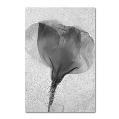 Trademark Fine Art Flowers on Ice 2 Canvas Wall Art