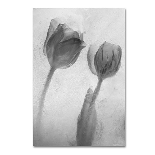 Trademark Fine Art Flowers on Ice-1 Canvas Wall Art