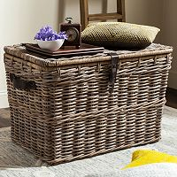 Safavieh Amancio Wicker Trunk