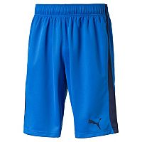 Men's PUMA Evostripe Shorts
