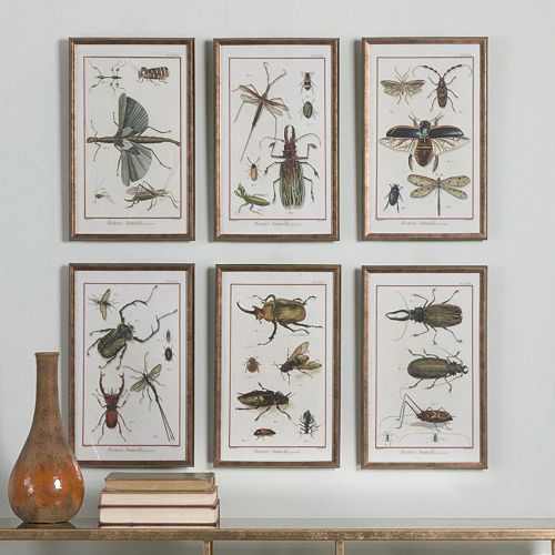 Insects Framed Wall Art 6-piece Set