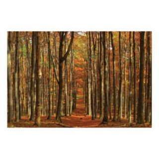 Reflective Art Temple of the Woods Canvas Wall Art