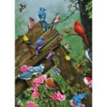 Cobble Hill Birds of the Forest 1000-pc. Jigsaw Puzzle