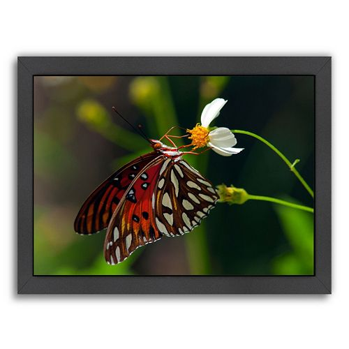 Americanflat Lovely Butterfly Framed Wall Art