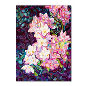 Trademark Fine Art Cascade Canvas Wall Art