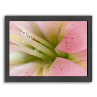 Americanflat Lily With Raindrops II Framed Wall Art