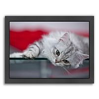 Americanflat Lovely Kitten Framed Wall Art