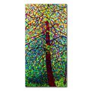 Trademark Fine Art Mandy Budan 'Kaleidoscope' Canvas Wall Art