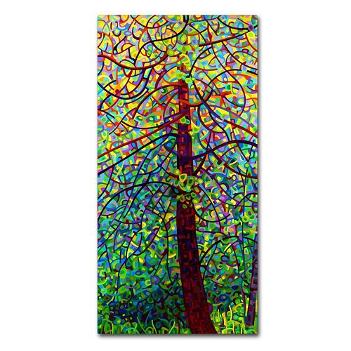 "Trademark Fine Art Mandy Budan ""Kaleidoscope"" Canvas Wall Art"