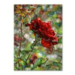 "Trademark Fine Art Mandy Budan ""Last Rose Of Summer"" Canvas Wall Art"