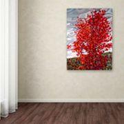 Trademark Fine Art Mandy Budan 'Passing Storm' Canvas Wall Art