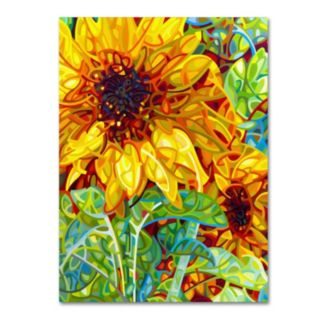 "Trademark Fine Art Mandy Budan ""Summer In The Garden"" Canvas Wall Art"