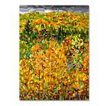 "Trademark Fine Art Mandy Budan ""Towards Autumn"" Canvas Wall Art"