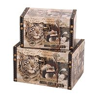 Household Essentials 2 pc Animal Kingdom Storage Box Set
