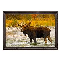 Reflective Art Aqua Moose Framed Wall Art